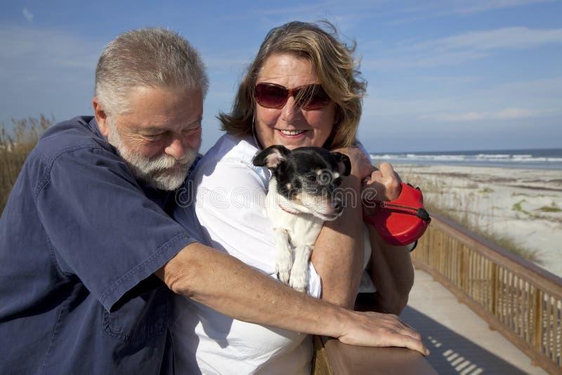 Pares mais velhos com o cão na praia imagem de stock royalty free