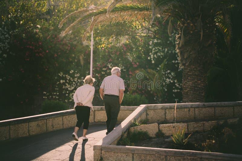 Pares mais velhos que andam no passeio ao longo das palmeiras imagem de stock royalty free
