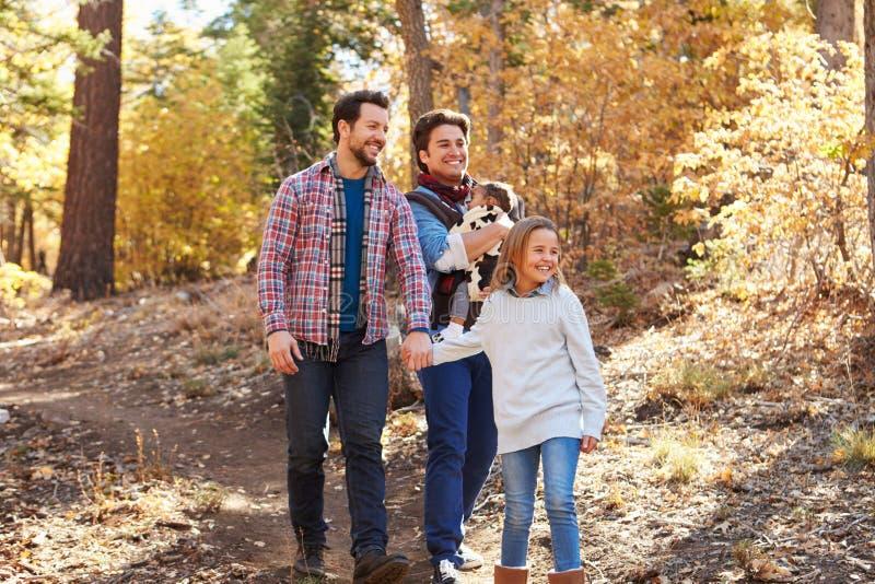 Pares masculinos alegres com as crianças que andam através da floresta da queda imagens de stock