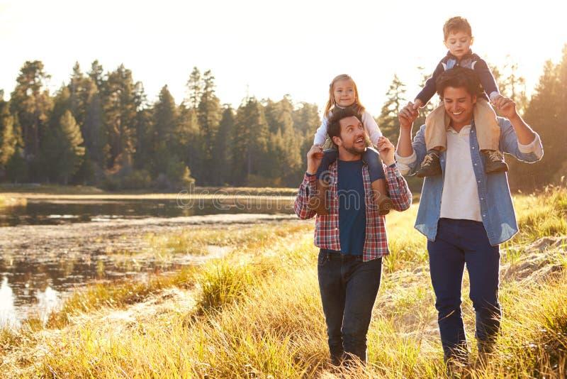 Pares masculinos alegres com as crianças que andam pelo lago fotos de stock
