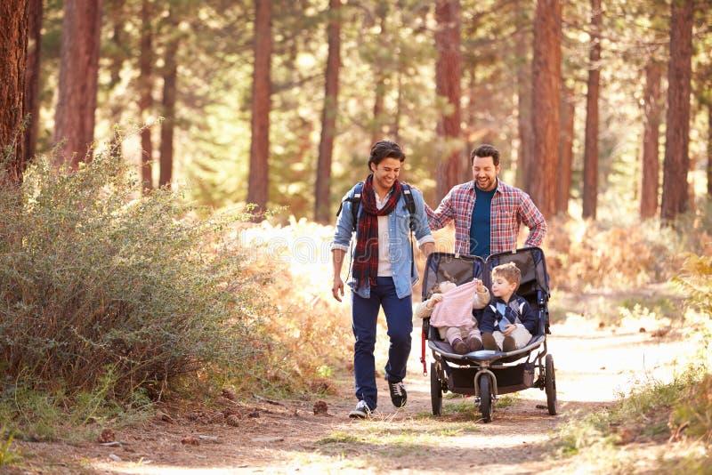 Pares masculinos alegres que empurram crianças no carrinho através das madeiras imagem de stock royalty free