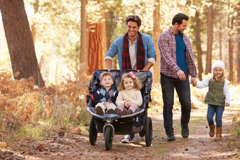 Pares masculinos alegres que empurram crianças no carrinho através das madeiras fotografia de stock royalty free