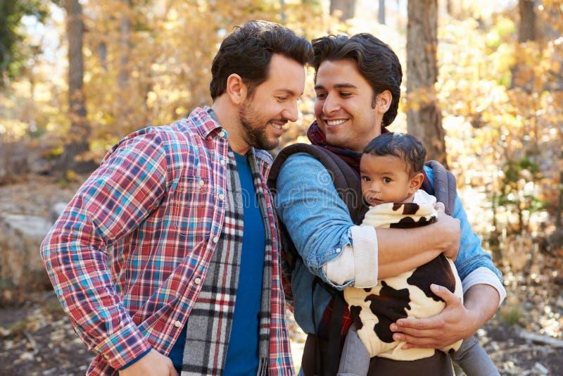 Pares masculinos gay con el bebé que camina a través de arbolado de la caída imagenes de archivo