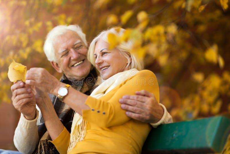 Pares mayores cariñosos en banco en parque del otoño imágenes de archivo libres de regalías