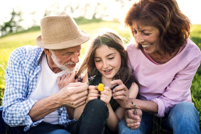 Pares mayores con la nieta afuera en la naturaleza de la primavera, relajándose en la hierba fotos de archivo libres de regalías