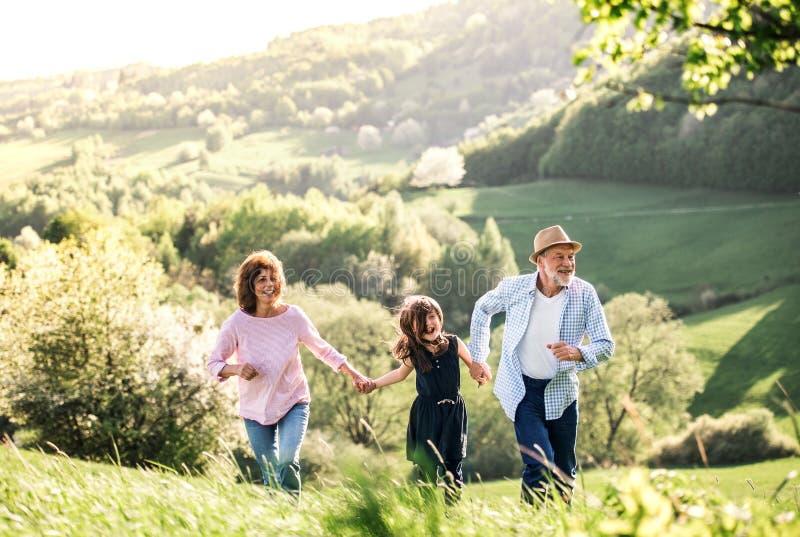 Pares mayores con la nieta en un paseo afuera en naturaleza de la primavera fotos de archivo