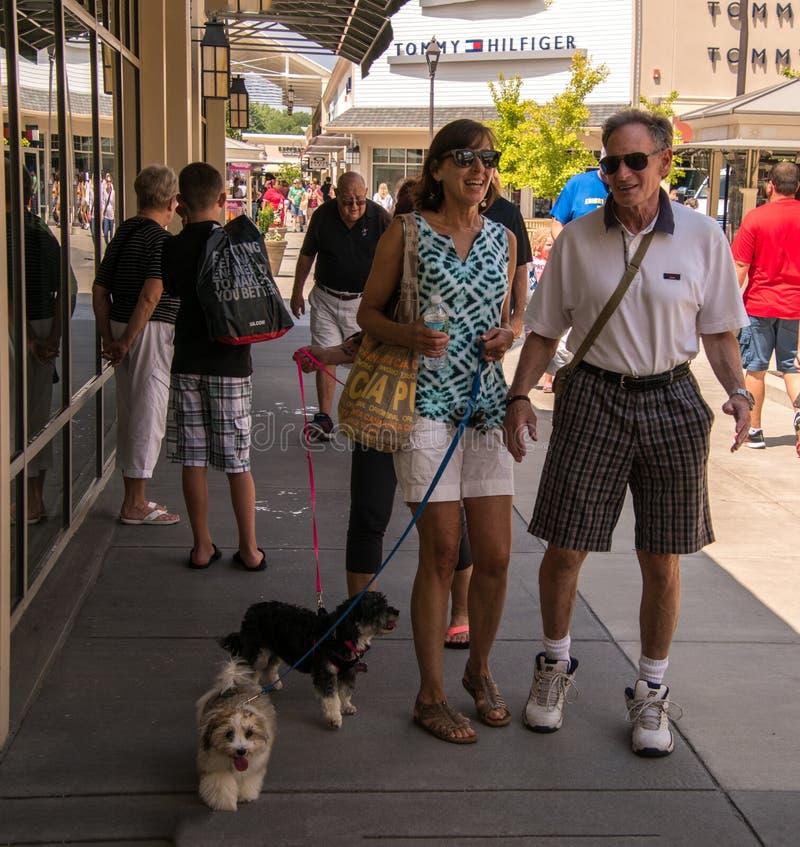 Pares mayores del nacido en el baby boom que caminan sus dos perros en la alameda superior del mercado de Gloucester fotos de archivo libres de regalías