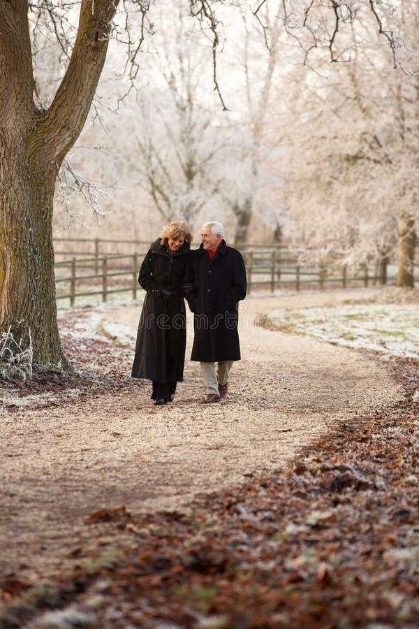Pares mayores en caminata del invierno fotografía de archivo