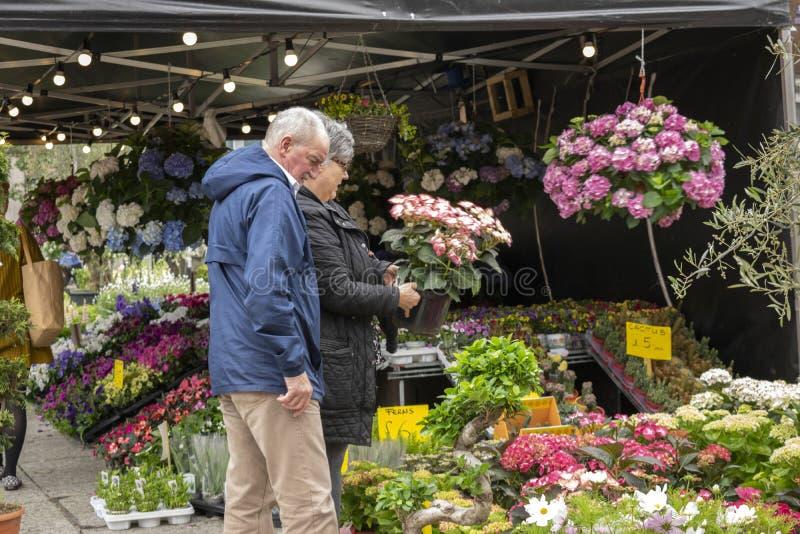 Pares mayores en el mercado al aire libre de la flor delante del ayuntamiento de Nottingham fotos de archivo libres de regalías