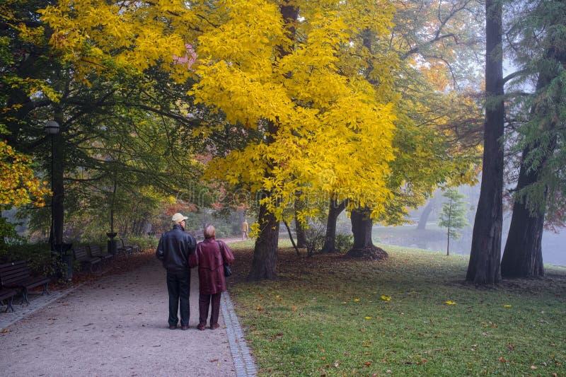 Pares mayores en parque imágenes de archivo libres de regalías
