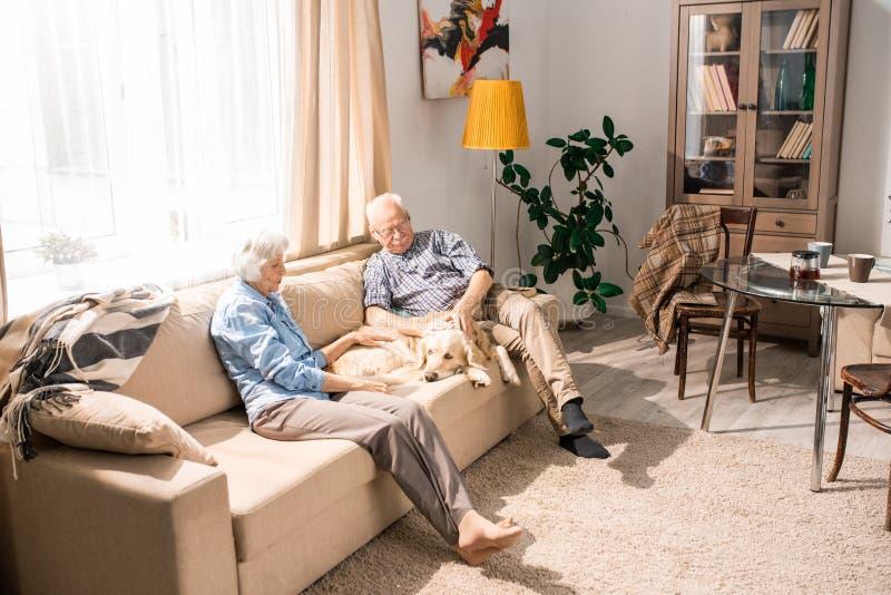 Pares mayores felices con el perro en casa fotografía de archivo libre de regalías