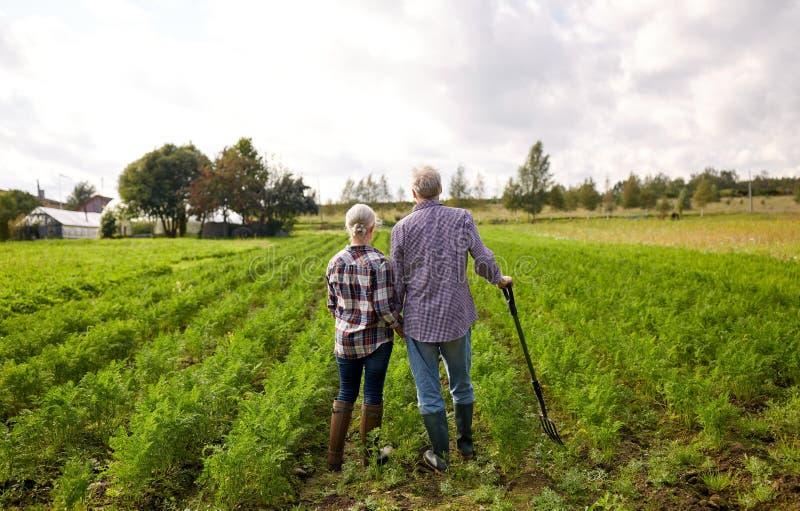 Pares mayores felices en la granja del verano imagenes de archivo