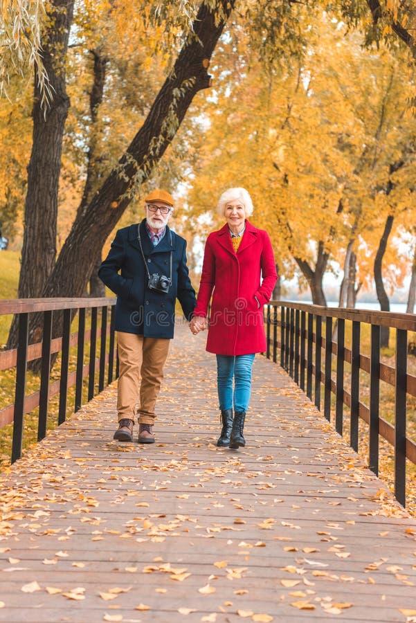 pares mayores felices que celebran las manos y caminar foto de archivo libre de regalías