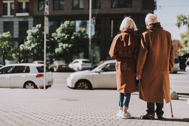 Pares mayores felices que llevan a cabo las manos en la calle imagen de archivo libre de regalías
