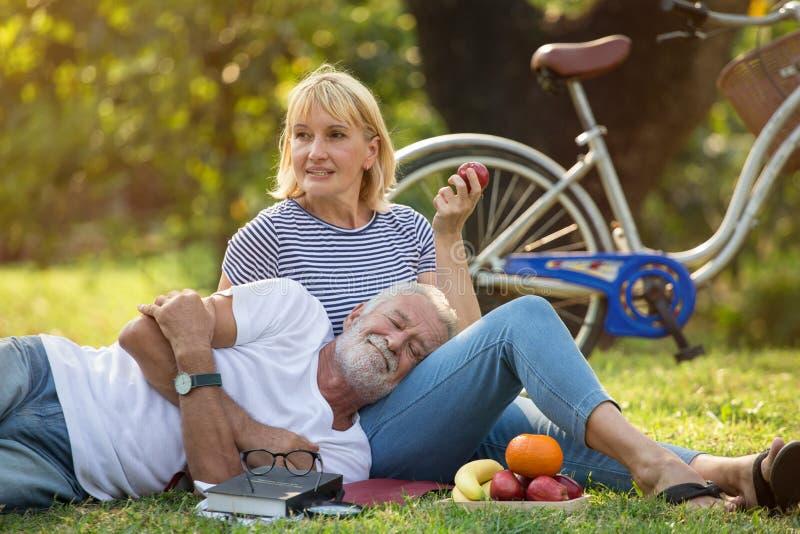 Pares mayores felices que se relajan en parque junto personas mayores que se sientan en hierba en el parque del verano Reclinació fotos de archivo