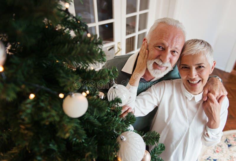 Pares mayores que adornan un árbol de navidad foto de archivo libre de regalías