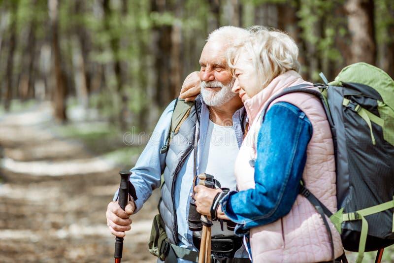 Pares mayores que caminan en el bosque imagenes de archivo