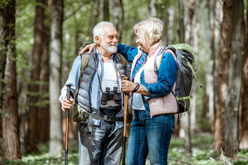 Pares mayores que caminan en el bosque imágenes de archivo libres de regalías