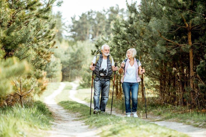 Pares mayores que caminan en el bosque foto de archivo libre de regalías