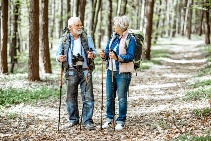Pares mayores que caminan en el bosque fotografía de archivo libre de regalías