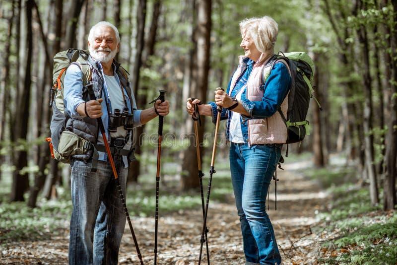 Pares mayores que caminan en el bosque fotografía de archivo
