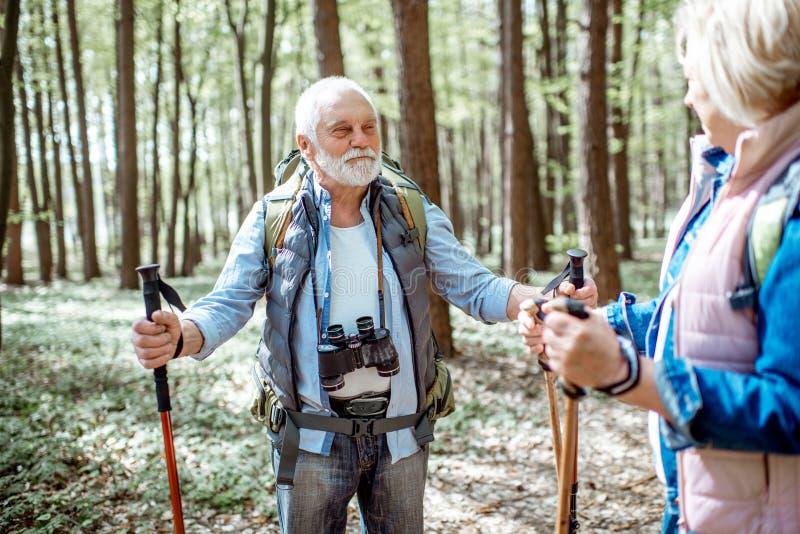 Pares mayores que caminan en el bosque foto de archivo