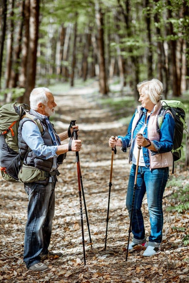 Pares mayores que caminan en el bosque fotos de archivo
