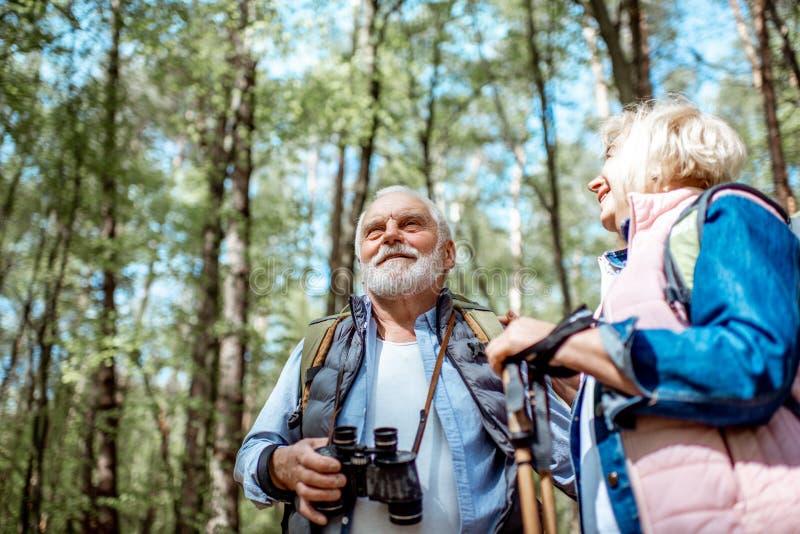 Pares mayores que caminan en el bosque imagen de archivo libre de regalías