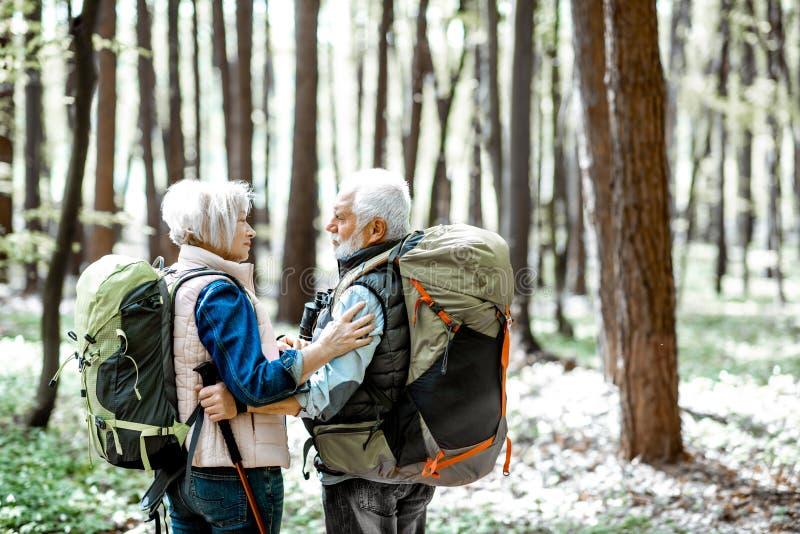 Pares mayores que caminan en el bosque imagen de archivo
