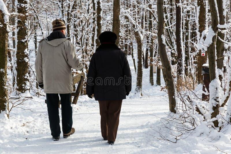 Pares mayores que caminan en el parque imagen de archivo