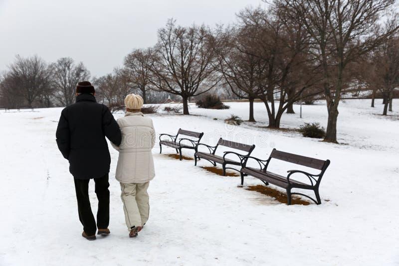 Pares mayores que caminan en el parque fotos de archivo libres de regalías