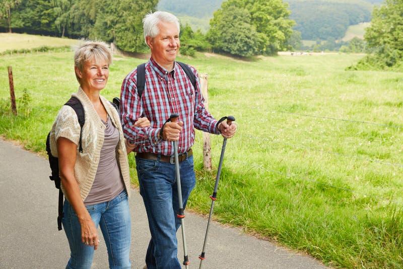 Pares mayores que caminan en verano fotografía de archivo libre de regalías