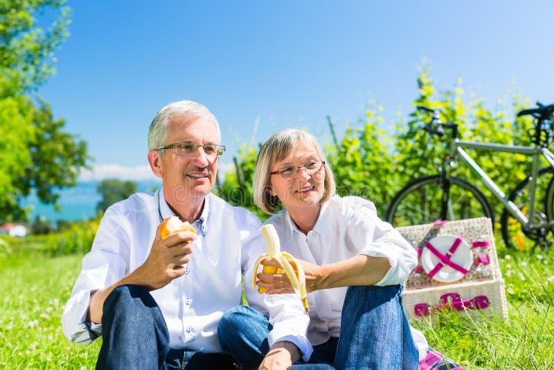 Pares mayores que comen y que beben en la comida campestre en verano fotografía de archivo libre de regalías