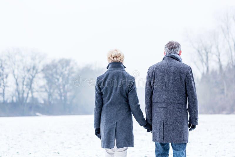 Pares mayores que tienen paseo del invierno fotos de archivo libres de regalías