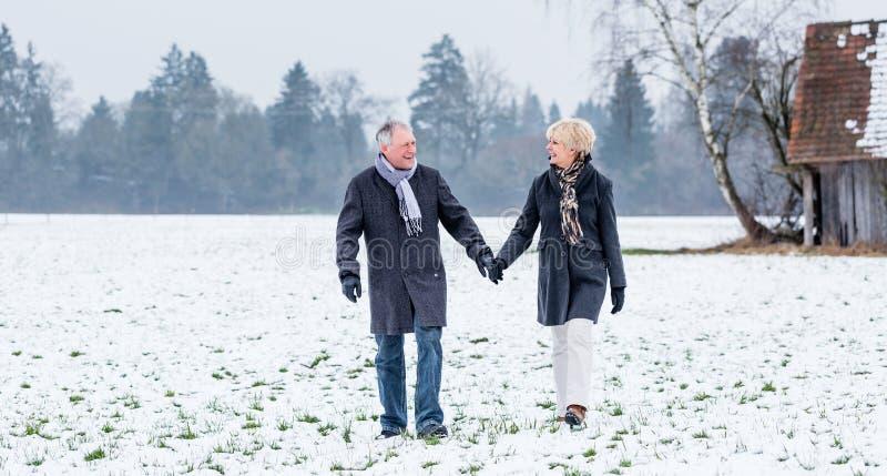 Pares mayores que tienen paseo en invierno imagen de archivo libre de regalías