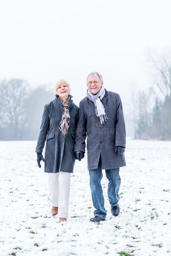 Pares mayores que tienen paseo en invierno fotografía de archivo libre de regalías