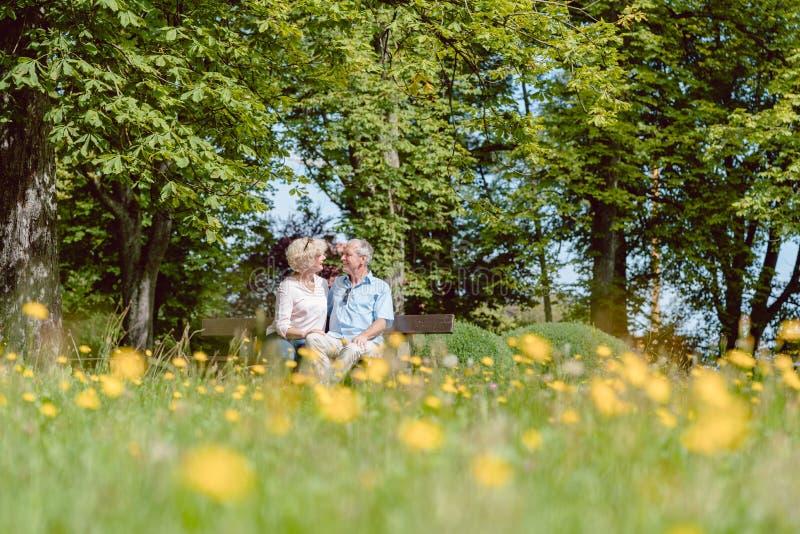 Pares mayores románticos en el amor que fecha al aire libre en un parque idílico fotografía de archivo