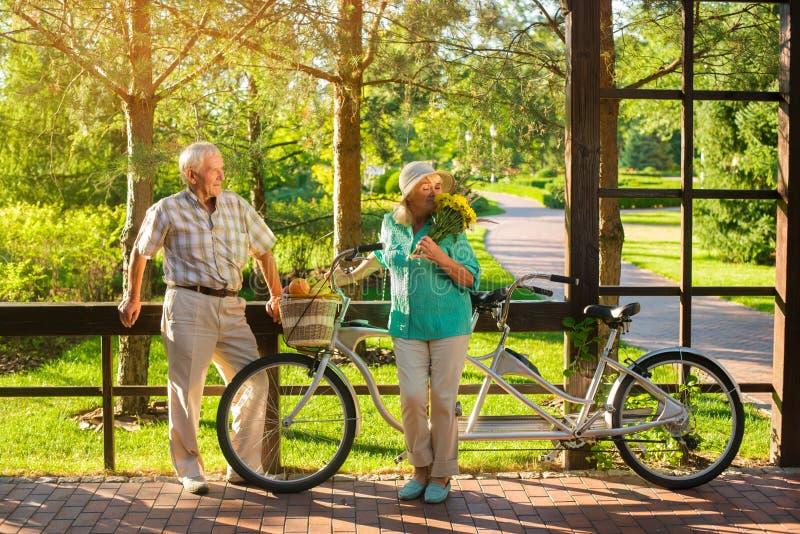 Pares mayores y bicicleta en tándem imagen de archivo