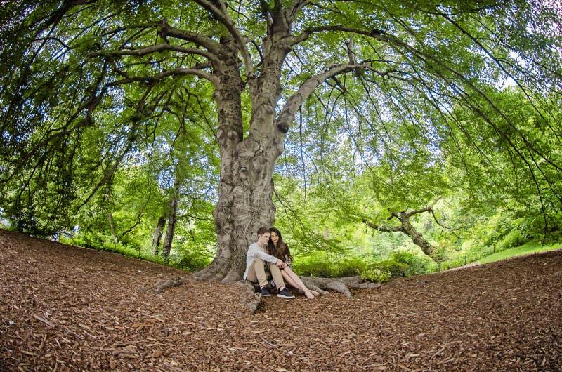Pares milenarios que se sientan debajo de un árbol grande imágenes de archivo libres de regalías