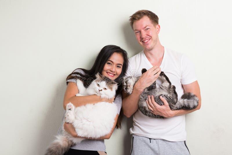 Pares multi-étnicos felices jovenes que sostienen dos gatos juntos contra el fondo blanco imagenes de archivo