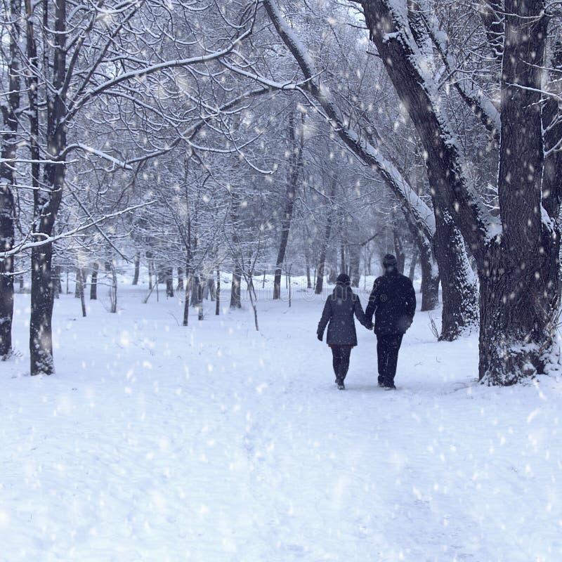Pares na floresta do inverno foto de stock royalty free