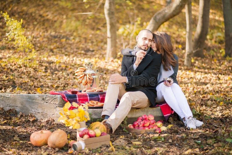 Pares no amor na queda em um piquenique Os amantes estão beijando, abraçar, bebendo a bebida Vapor e abóbora, folhas amarelas, t foto de stock royalty free