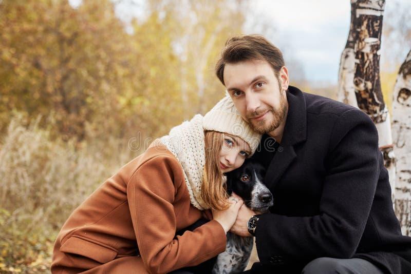 Pares no amor que anda no parque, dia de Valentim Um homem e uma mulher abraçam e beijo, um par no amor, sentimentos macios e amo foto de stock royalty free