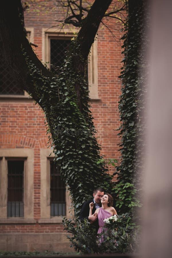 Pares, novia europea y novio besándose en el parque cerca de árbol grande imágenes de archivo libres de regalías