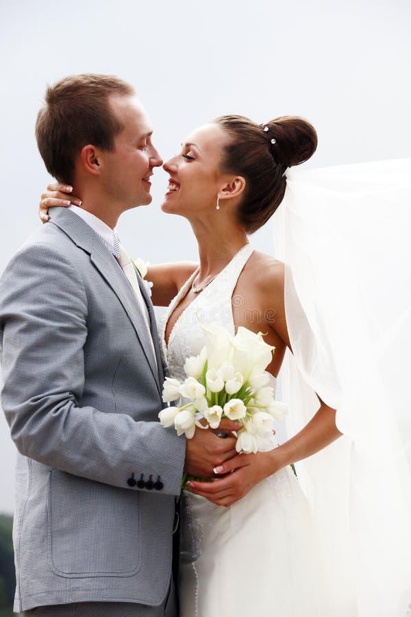 pares Novo-casados fotos de stock royalty free