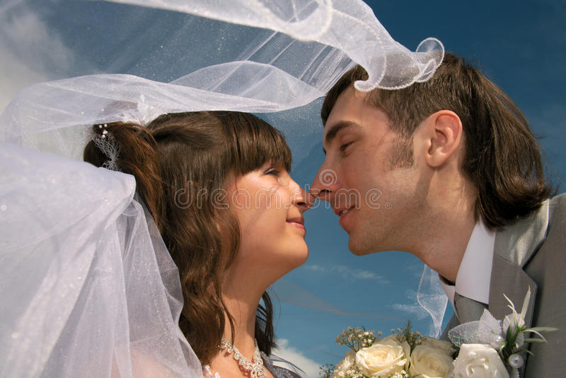 Pares novo-casados felizes fotografia de stock