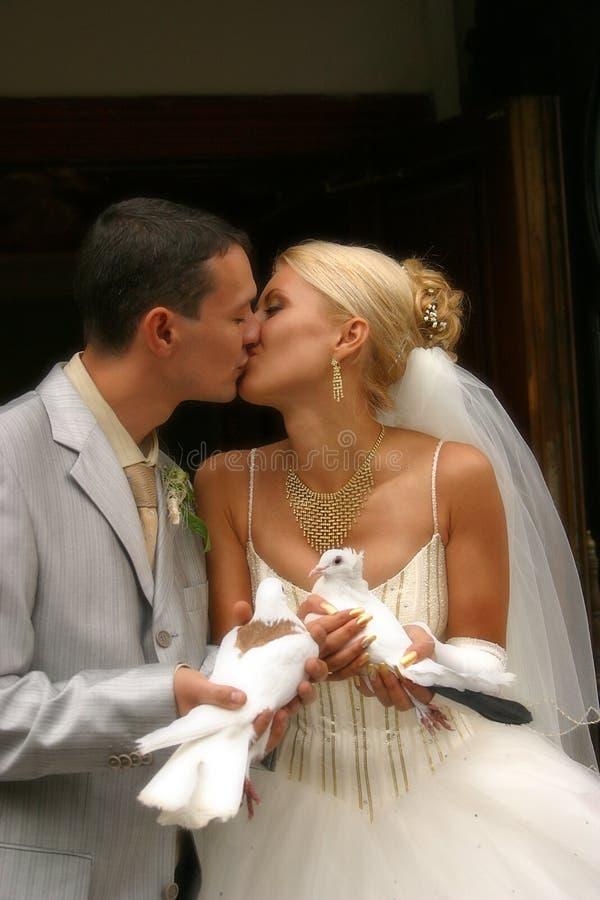 Pares novo-casados felizes imagens de stock royalty free
