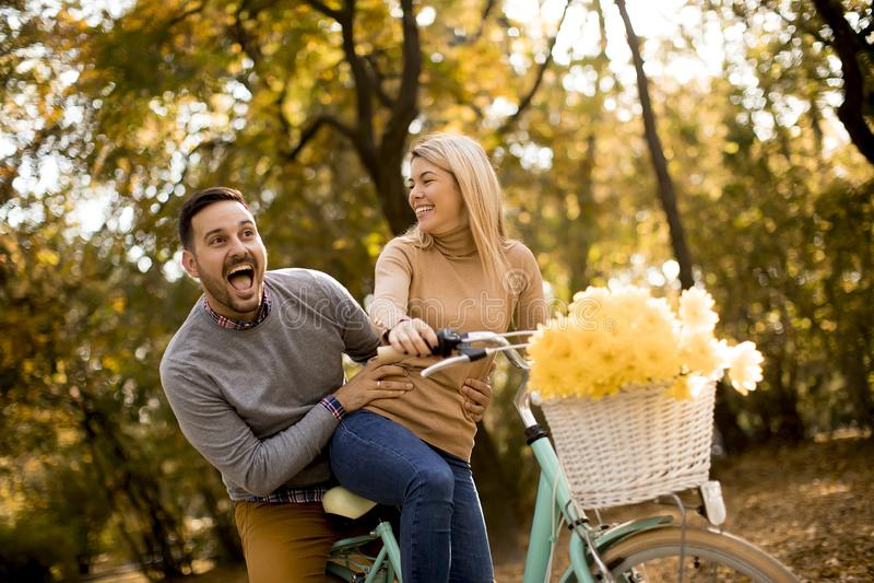 Pares novos ativos que apreciam montando a bicicleta na paridade dourada do outono fotos de stock