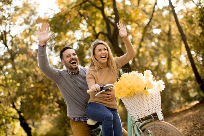Pares novos ativos que apreciam montando a bicicleta na paridade dourada do outono imagem de stock