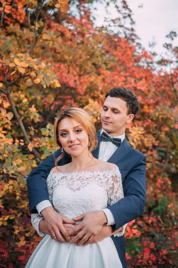 Pares novos atrativos de surpresa no dia do casamento noiva no vestido longo branco elegante e no ramalhete azul à disposição, o  imagem de stock royalty free